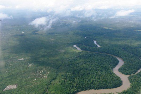 アマゾンやジャングルを巡る南米クルーズの魅力