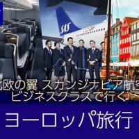 北欧の翼<br>スカンジナビア航空ビジネスクラスで行くヨーロッパ旅行