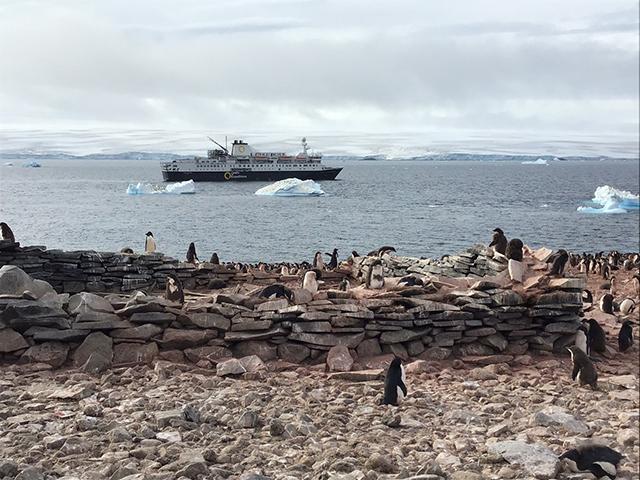 オーシャン・エンデバー南極探検 南極へは色んなクルーズ船でのツアーがありますが、イチオシはこれ!