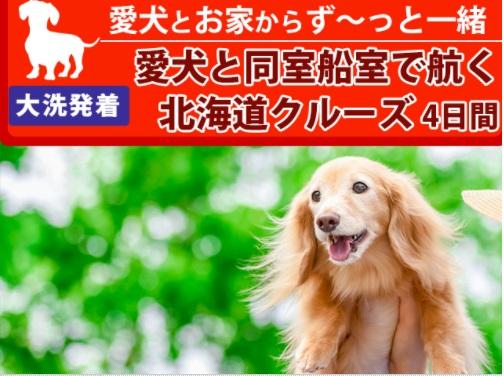 愛犬とお家からず~っと一緒【大洗発着】愛犬と同室船室で航く北海道クルーズ4日間