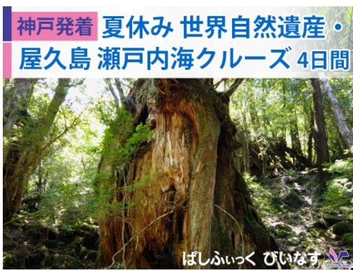 日本船「ぱしふぃっくびいなす」で航く【神戸発着】夏休み 世界自然遺産・屋久島 瀬戸内海クルーズ 4日間