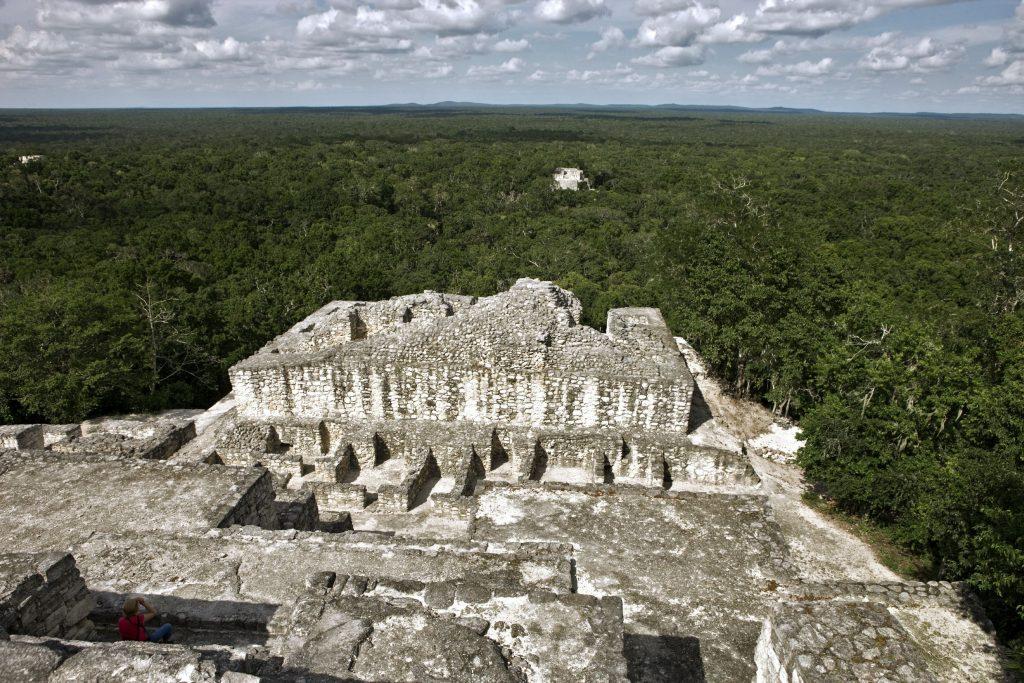 カンペチェ州カラクムルの古代マヤ都市と熱帯保護林年、